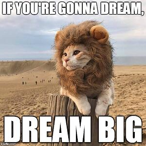 dream big meme