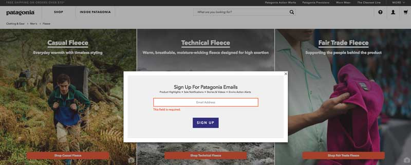 Patagonia email CTA