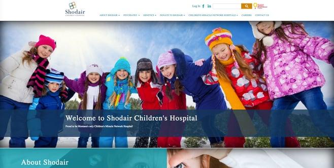 shodair-website.jpg